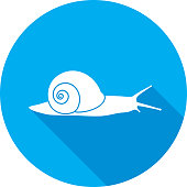 Vector illustration of a blue snail icon in flat style.