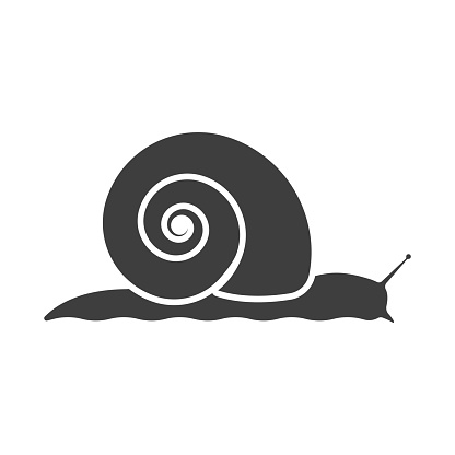 Snail icon. Vector on a white background.