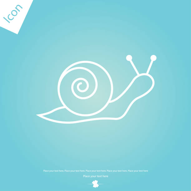 snail line icon, outline sign - snail stock illustrations