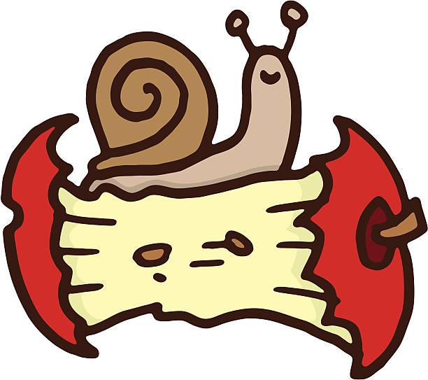 snail on an apple core - rotten apple stock illustrations, clip art, cartoons, & icons