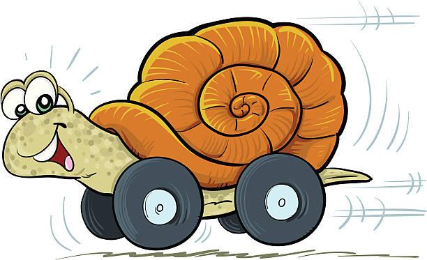 weinbergschnecke auf rädern - lustige schnecken stock-grafiken, -clipart, -cartoons und -symbole