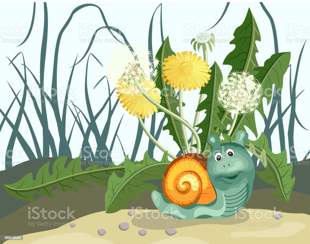 Snail royalty-free snail stock vector art & more images of animal