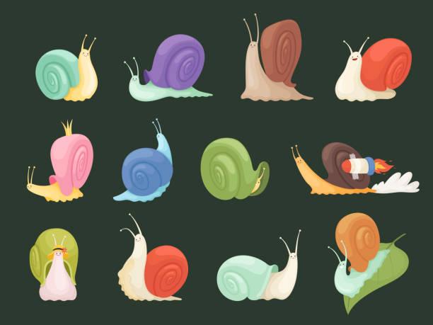 stockillustraties, clipart, cartoons en iconen met slakken karakters. de insecten van het beeldverhaal met spiraalhuisshellslakslijmvectorillustraties - slak