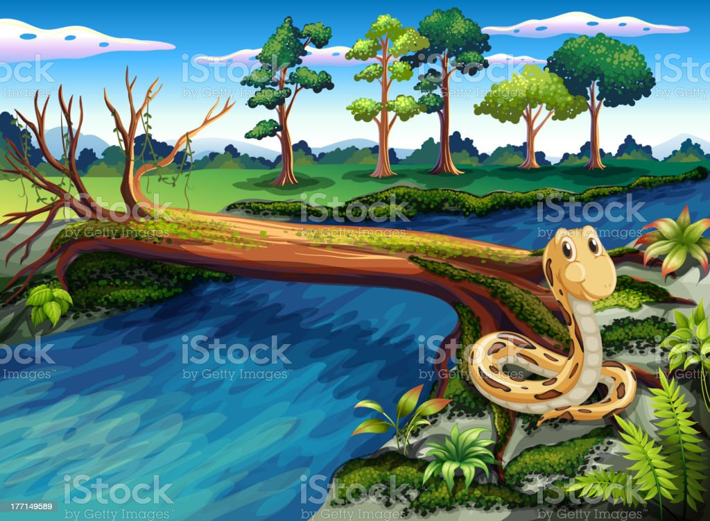 Snake at the riverbank royalty-free stock vector art