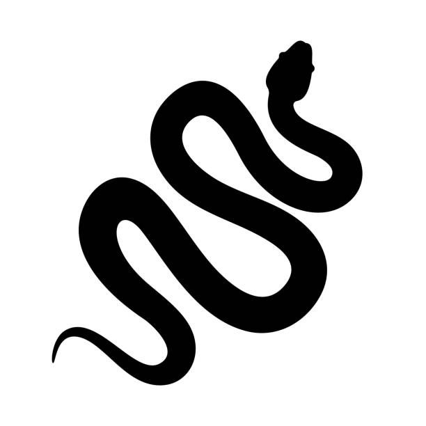 snake cobra or anaconda silhouette vector icon. long snake creeping - reptiles stock illustrations
