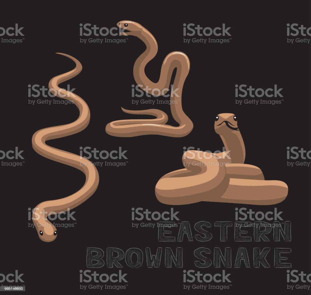 Snake Eastern Brown Cartoon Vector Illustration vector art illustration