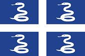 Snake Flag of Martinique.. Vector illustration. World flag