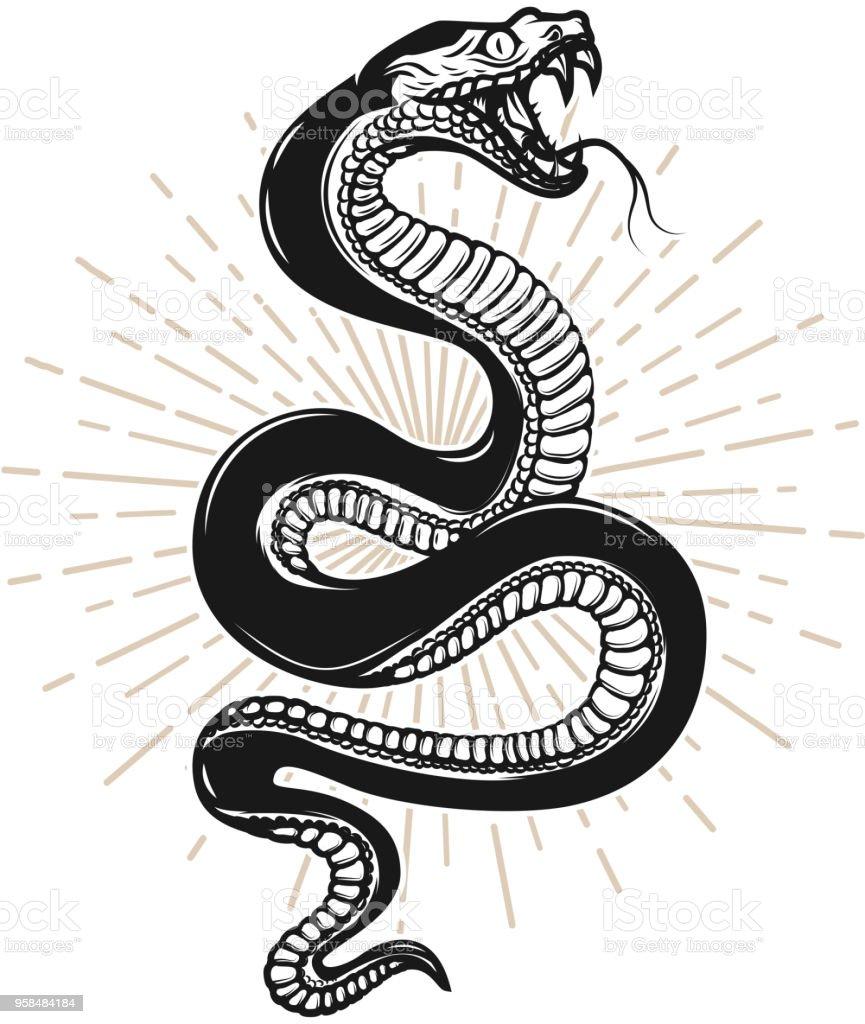 Ilustración de la serpiente sobre fondo blanco. Diseño de elemento para poster, camiseta, emblema, signo. - ilustración de arte vectorial
