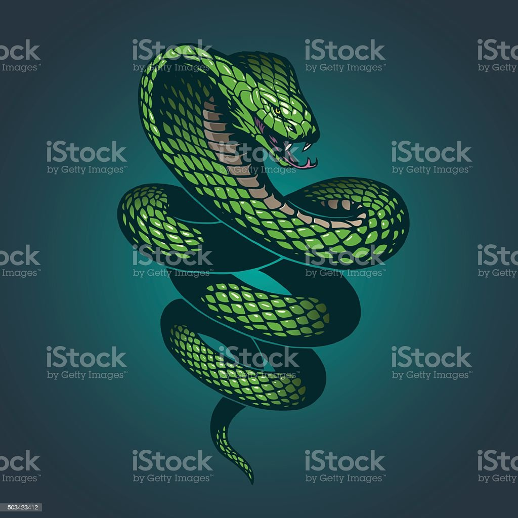 Snake illustration vector art illustration