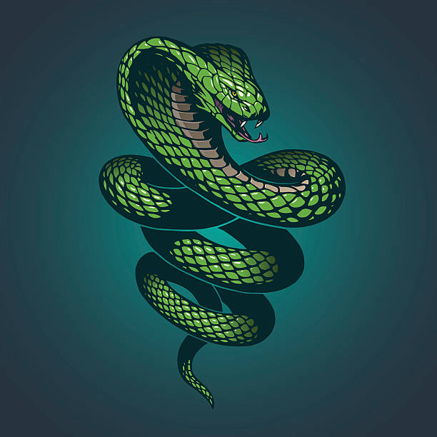 snake illustration - snakes tattoos stock illustrations, clip art, cartoons, & icons