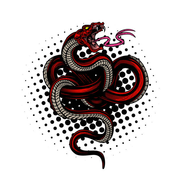 Snake poster design. Vector hand drawn illustration of snake in engraving technique halftone and paint splashes on white background. Modern fashionable tee shirt print or label design. snakes tattoos stock illustrations