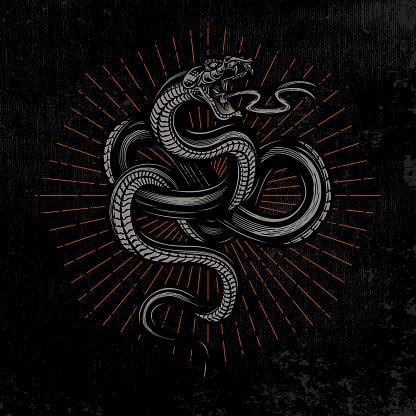 Snake poster.