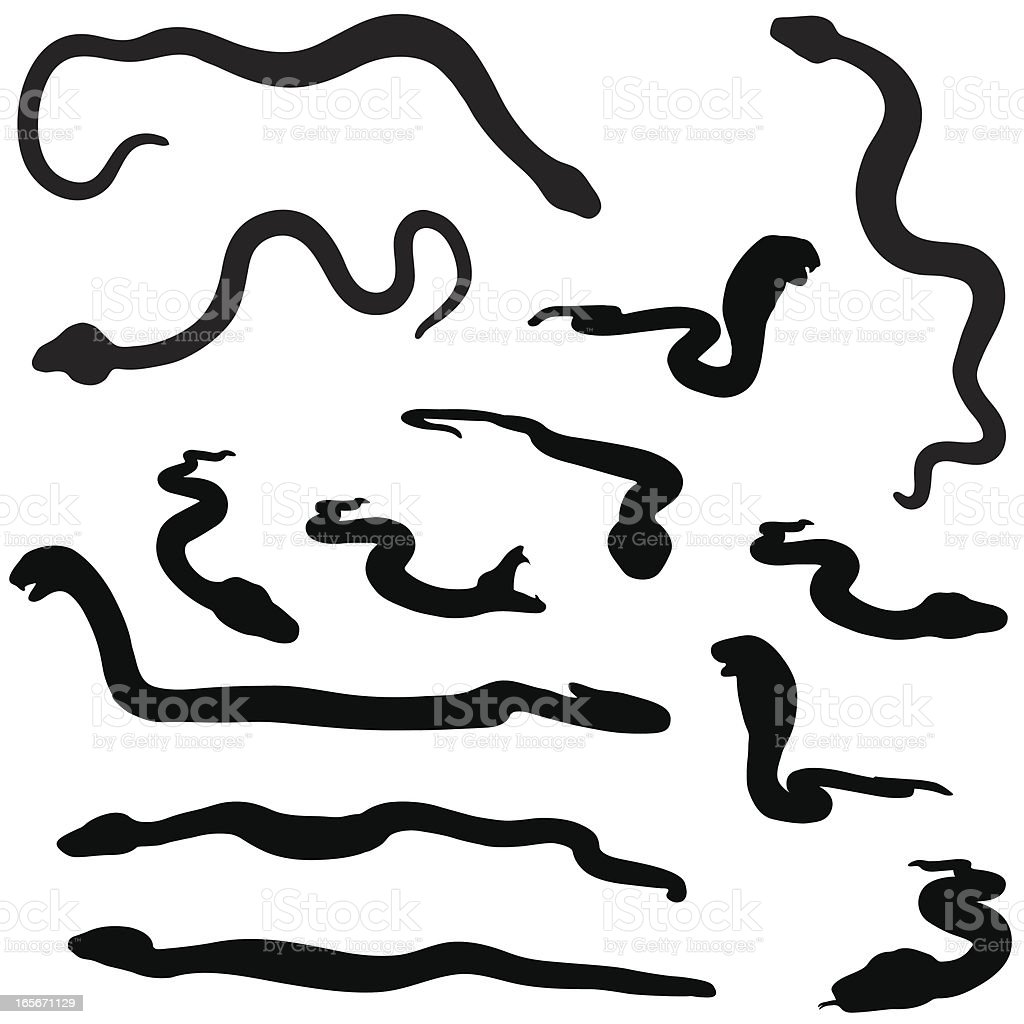 Snake silhouette collection vector art illustration