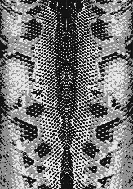 Snake Skin Texture. Seamless Pattern Black On White Background... Royalty  Free Cliparts, Vectors, And Stock Illustration. Image 42465060.