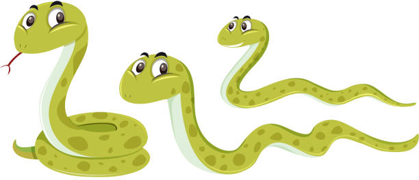 snake with different position - snake stock illustrations, clip art, cartoons, & icons