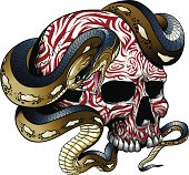 Vector illustration of a snake wrapped around a skull