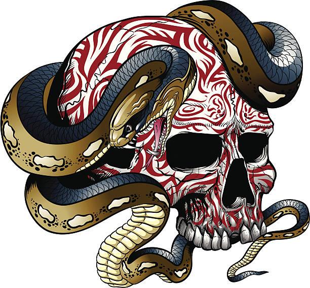 Snake wrapped around skull vector art illustration