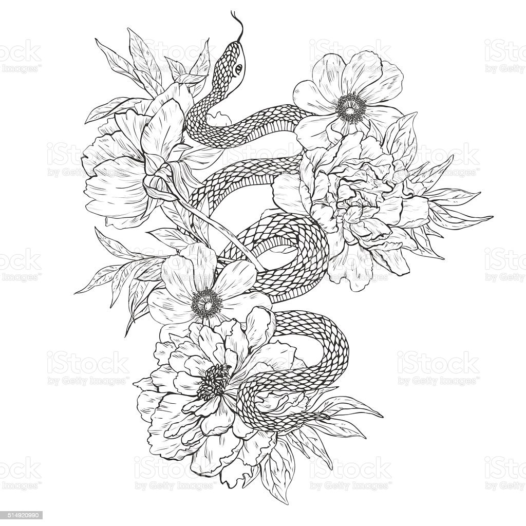 Snakes and flowers. Tattoo art, coloring books. vector art illustration