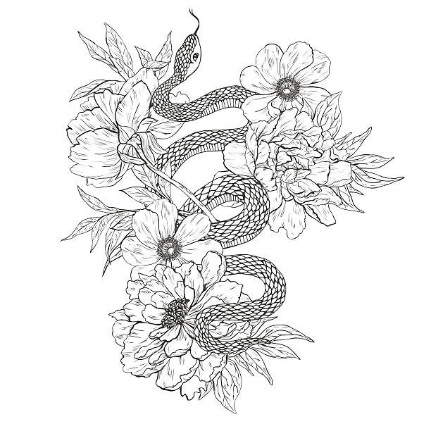 snakes and flowers. tattoo art, coloring books. - snakes tattoos stock illustrations, clip art, cartoons, & icons
