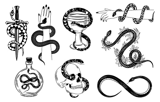 Snakes tattoo. Occult snake wrapped around hand, skull, dagger, bowl and poison. Serpent silhouette in flowers. Mystical tattoos vector set. Illustration tattoo snake, symbol of occult