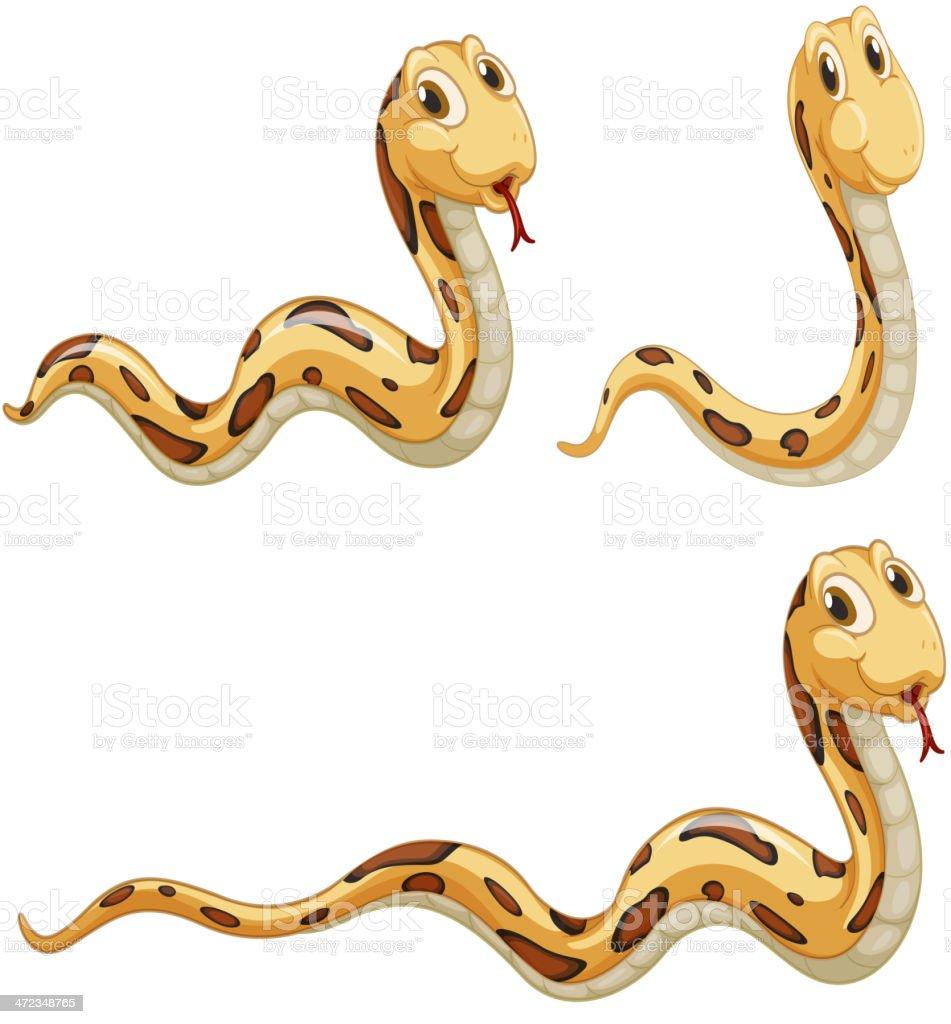 snakes royalty-free stock vector art