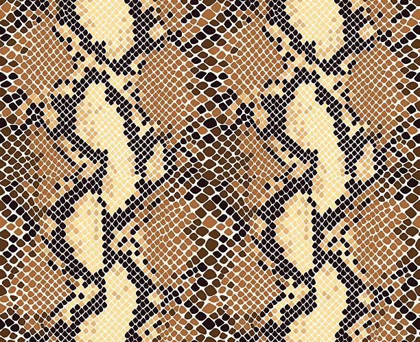 Snakeskin Pattern Snake skin seamless vector pattern. Reptile seamless texture. Animal print. animal markings stock illustrations