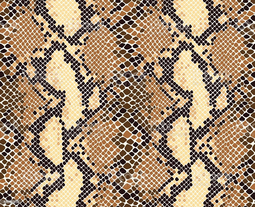 Snakeskin Pattern vector art illustration