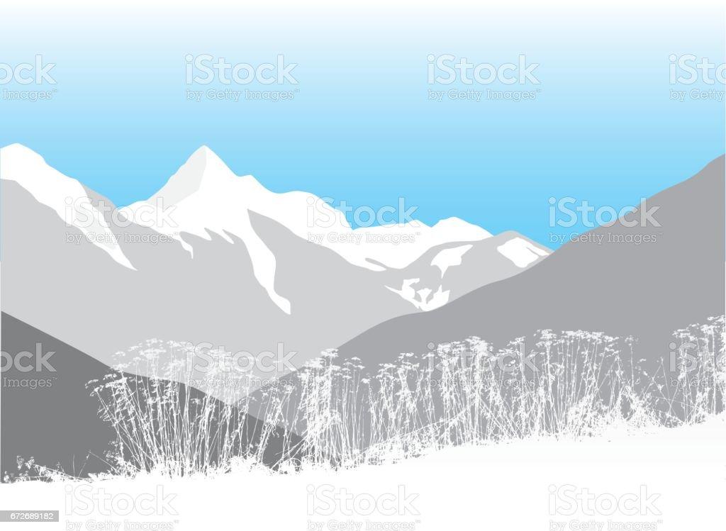 Snow Cap Weeds vector art illustration