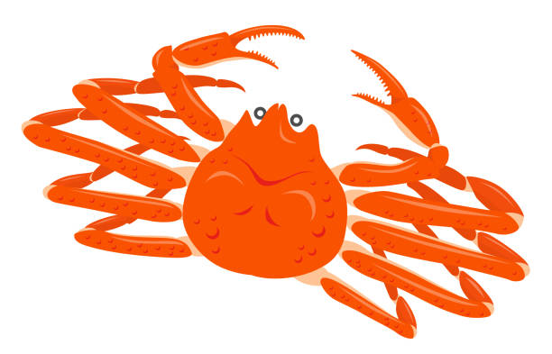 Royalty Free Snow Crab Clip Art, Vector Images ...