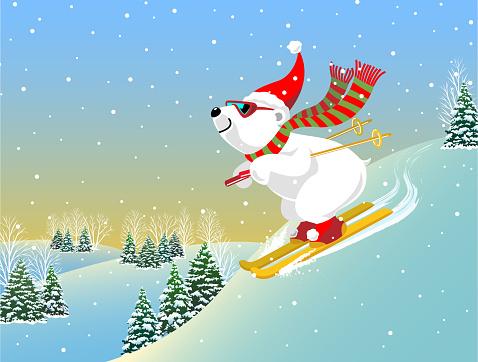 Snow Skiing Polar Bear