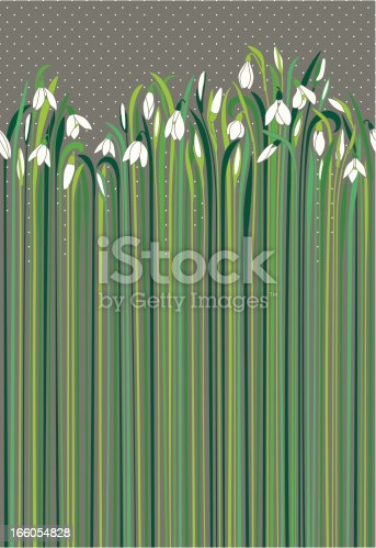 istock Snowdrops nuances of green and grey like rainy day 166054828