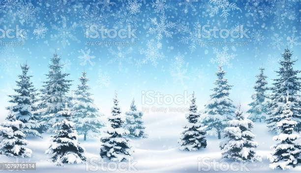 Snowfall and winter forest vector id1079712114?b=1&k=6&m=1079712114&s=612x612&h=mzrwaojr6pshtghcd9lh14cxzorcjm bdo6l tlbqae=