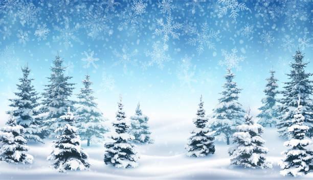 ilustrações, clipart, desenhos animados e ícones de queda de neve e floresta de inverno. - inverno