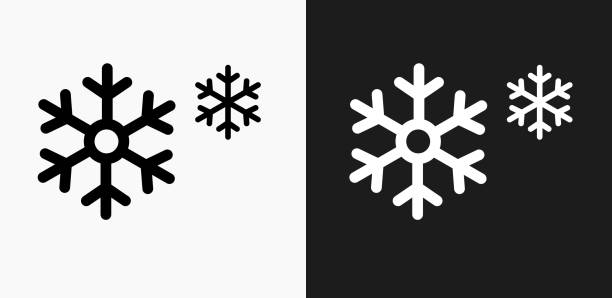 Snowflakes Icon on Black and White Vector Backgrounds vector art illustration