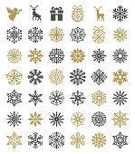 Vector illustration of the snowflakes set.