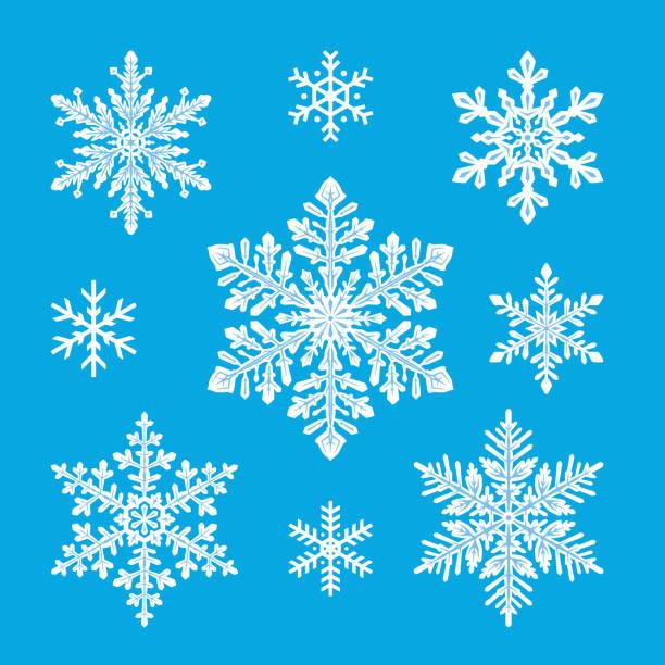 stockillustraties, clipart, cartoons en iconen met sneeuwvlokken set - snowflakes