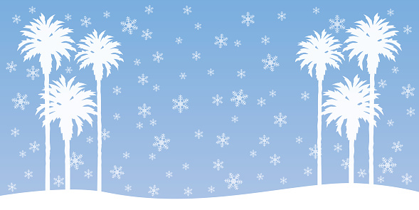 Snowing Palm Tree Background