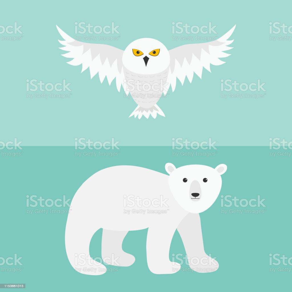 Snowy white owl. Flying bird with big wings. Polar bear. Arctic...