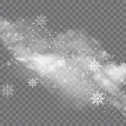Snowy winter and fog on transparent background. Vector