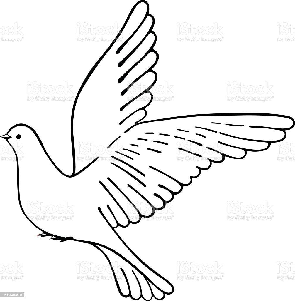 Soaring Dove Stok Vektor Sanati Baris Isareti Nin Daha Fazla