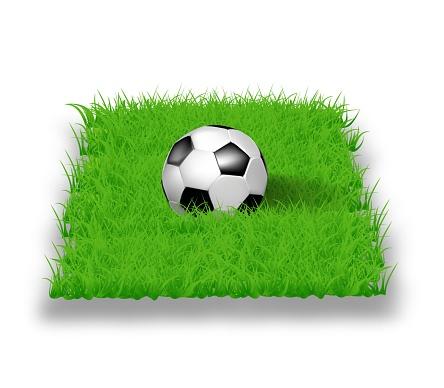 Soccer ball on grass in 3D, vector illustration