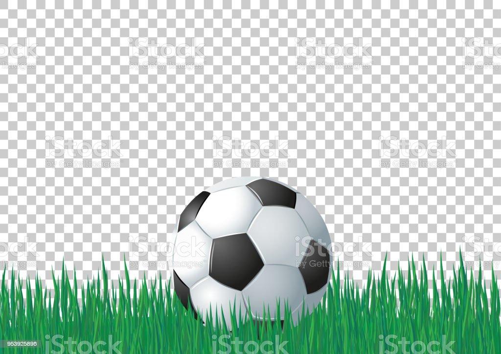 Fussball Auf Dem Grunen Rasen Auf Transparenten Hintergrund