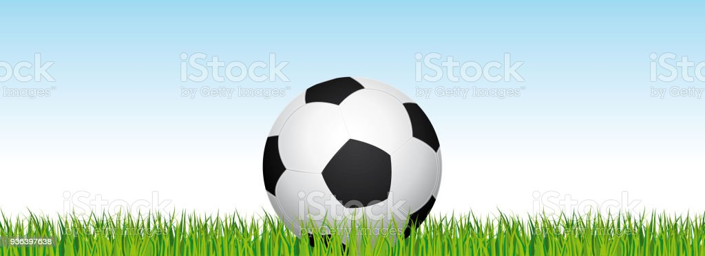 Soccer banner. Football stadium grass and blue sky background. Vector header with soccer ball in the middle.