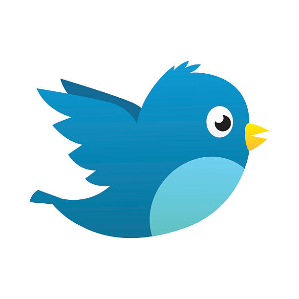 social media blue bird - birds stock illustrations