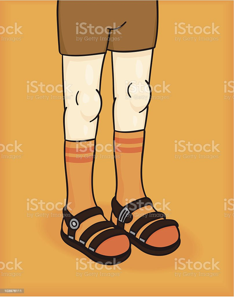 Socks and Sandals royalty-free stock vector art