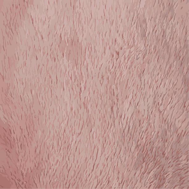 soft plush texture - fur texture stock illustrations, clip art, cartoons, & icons