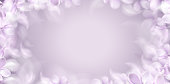 Soft spring white background with purple blurred flower petals vector illustration