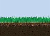 Vector soil and grass. Cutaway