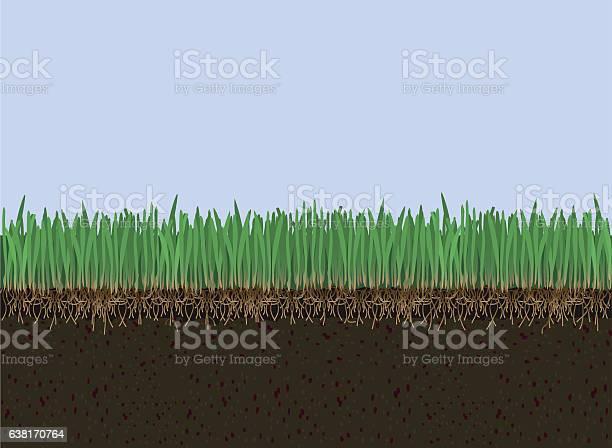 Soil and grass vector id638170764?b=1&k=6&m=638170764&s=612x612&h=tfg6 fea3hixukc t0cbksmsmgni tqmdmanap9yjyg=