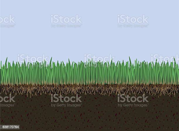 Soil And Grass Stock Illustration - Download Image Now